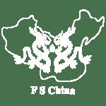 docshipper-fschina-logo-partner